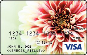Visa Gift Card with a Chrysanthemum flower image on it